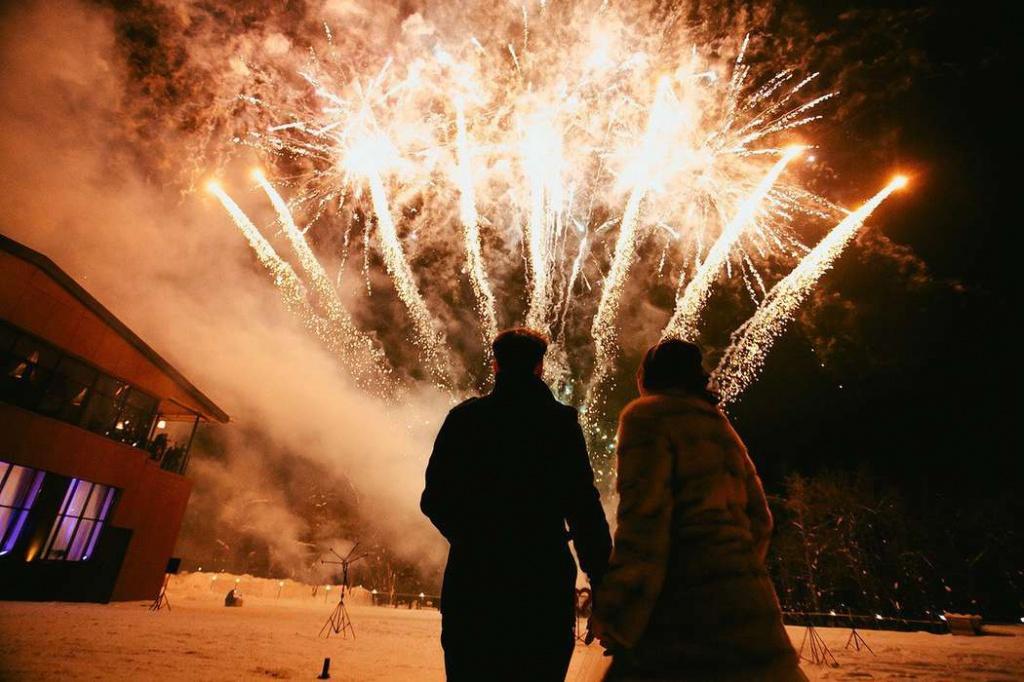 Встречаем Новый год без происшествий 1
