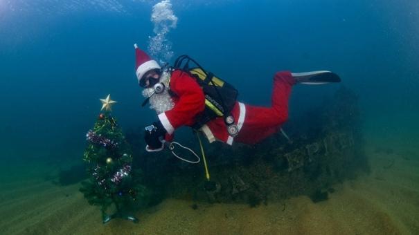 Новогодняя ёлка появится на дне Черного моря 4