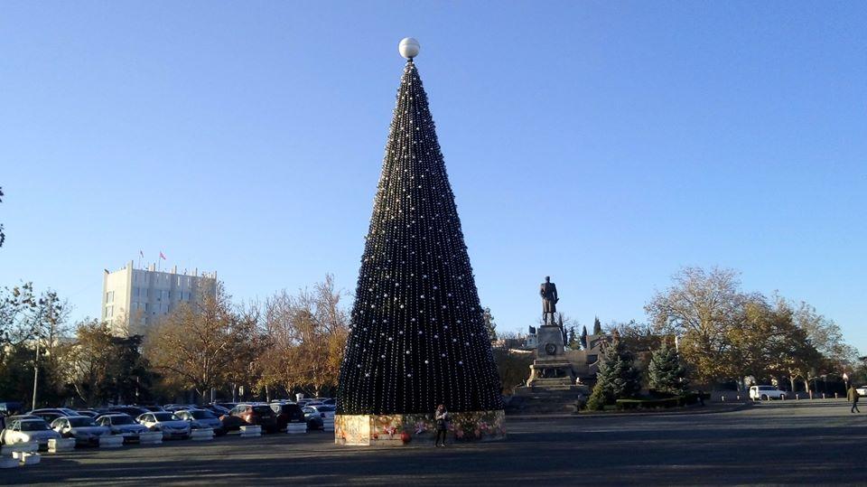Севастопольская елка - одна из самых высоких в стране 1