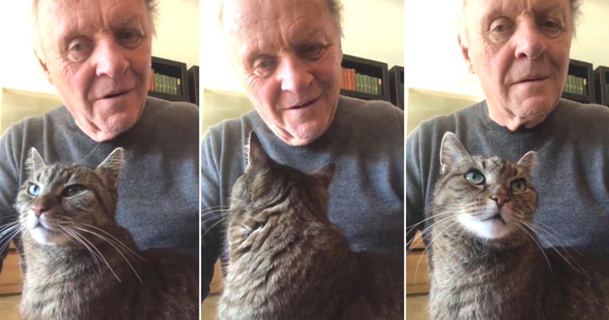 Видео Энтони Хопкинса с котом стало вирусным 5