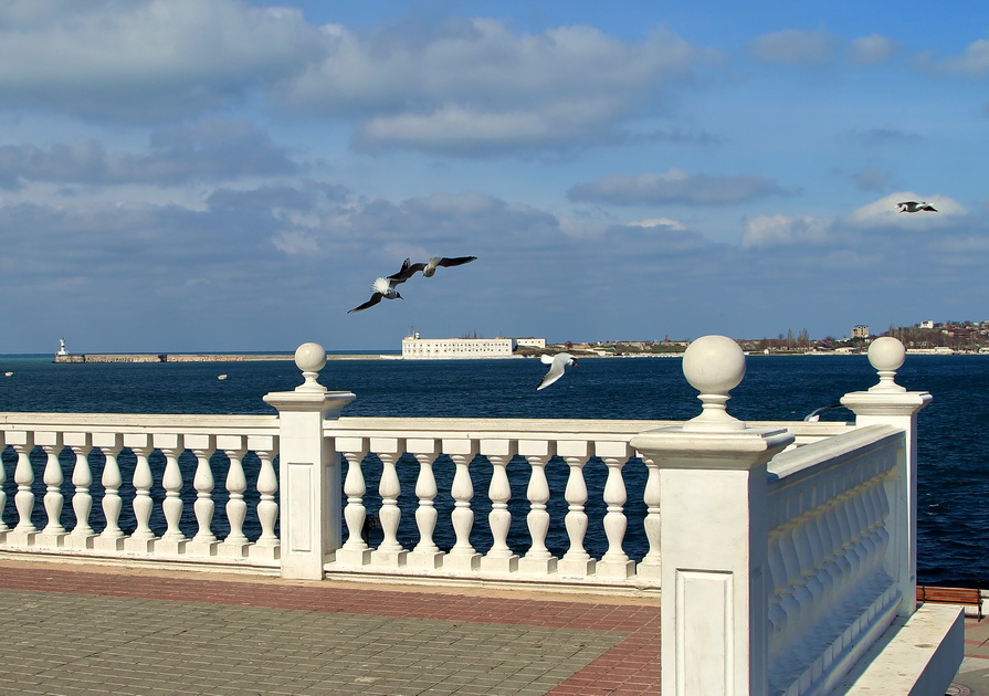 Севастополь вошел в топ-5 городов с высоким качеством жизни 8