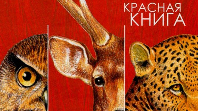 В Красную книгу России внесли новые виды 1