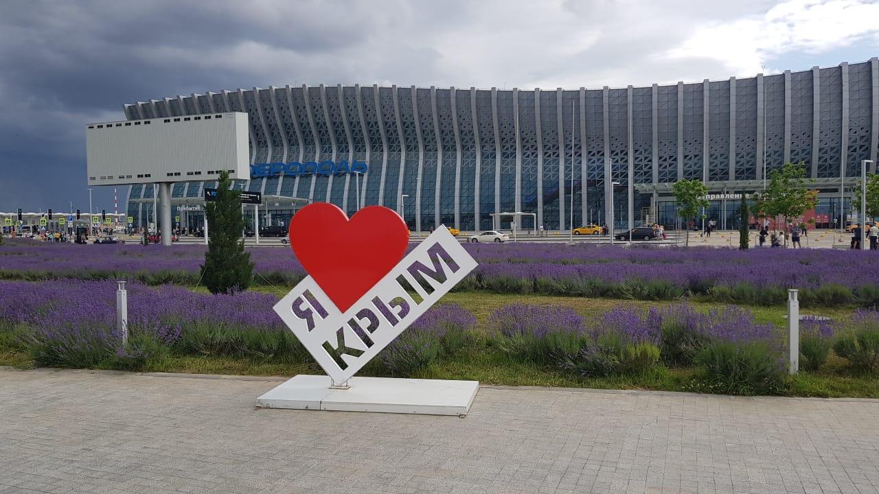 В аэропорту «Симферополь» цветет лаванда 4
