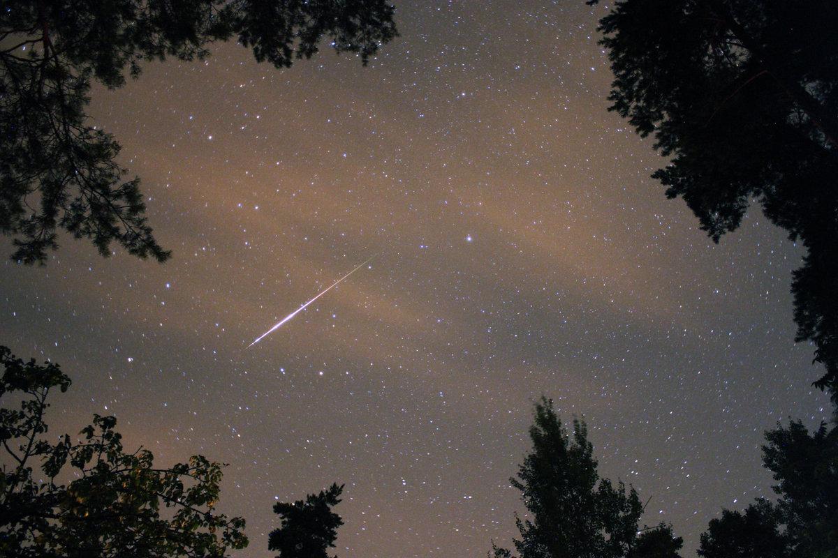 В августе россияне увидят мощнейший звездопад года 1