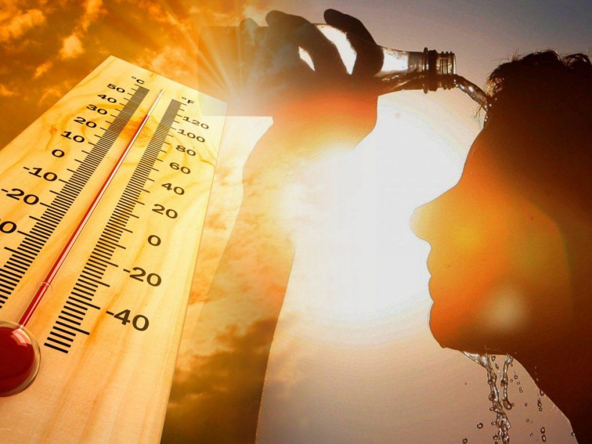 Крым накрыла аномальная жара 10